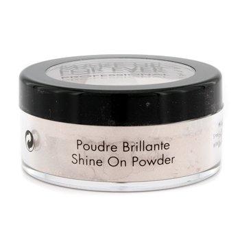 Make Up For Ever Shine On Powder - #4 (Pink Porcelain)  10g/0.35oz
