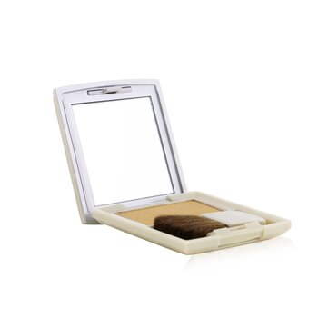 Kanebo Cheek Color - CC06 Gold  3g/0.1oz