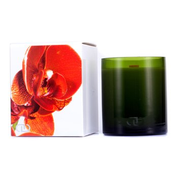 DayNa Decker Botanika Multisensory Candle with Ecowood Wick - Clementine  170g/6oz